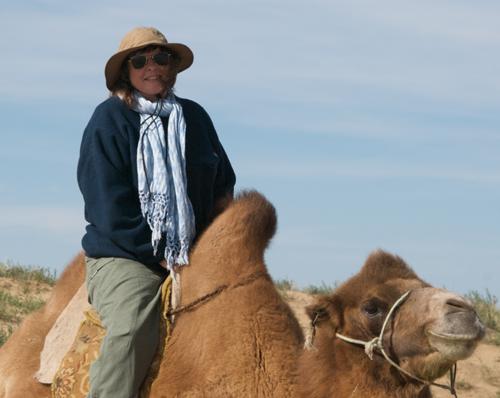 Camel ride at Arburd Sands