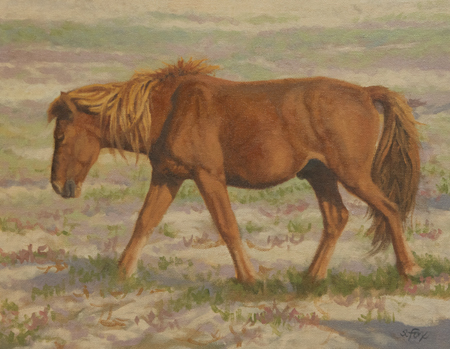 "Chestnut Stallion, Arburd Sands   oil  11"" x14"""