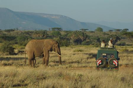 Samburu encounter