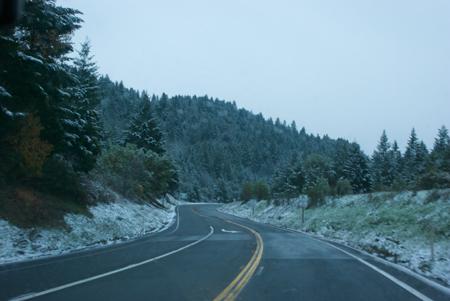 Near Leggett, US101