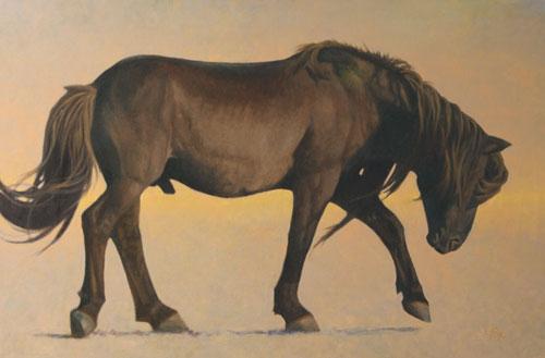 mongol-horses-ikh-nart-stallion