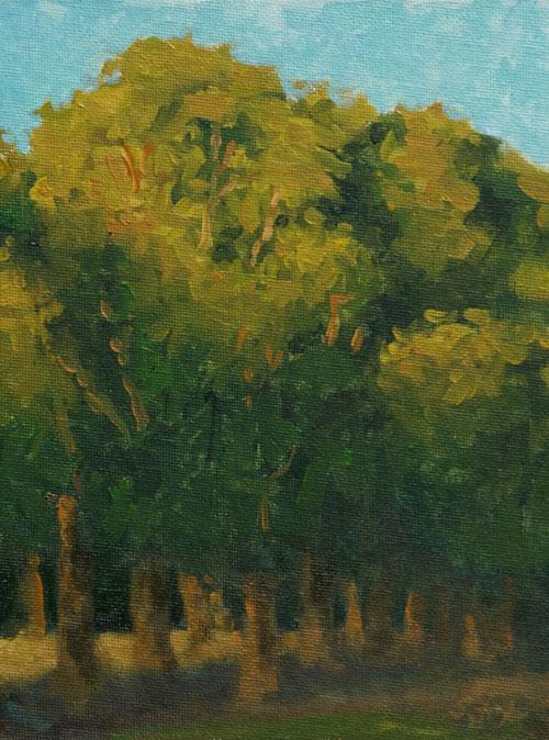 """Dubois Cottonwoods oil 8""""x6"""""""