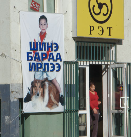 Pet shop sign, Ulaanbaatar