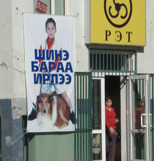 Pet shop sign, Ulaanbaatar