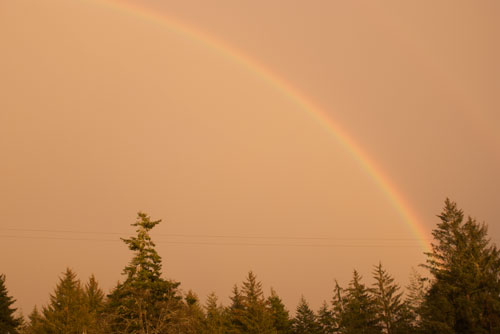 Rainbow from last week's storm