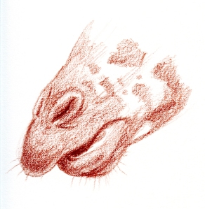 giraffe-mouth