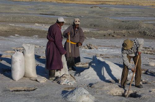 Harvesting salt, western Mongolia