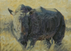 rhino-5