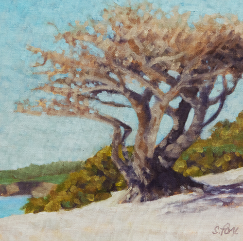 Beach Light, Carmel 12x12 oil on canvasboard