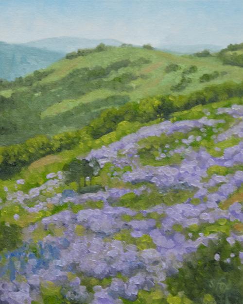 "Bald Hills Lupine 10x8"" oil on canvasboard"