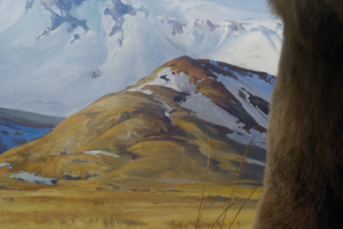 Alaskan brown bears, background diorama detail