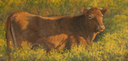 """How Now Red Cow  6x12"""" oil on canvasboard"""