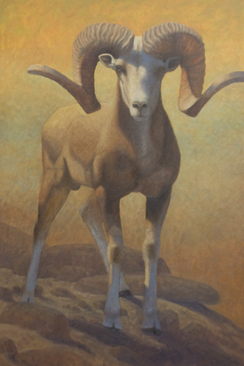"Baga Gazriin Chuluu Argali  36x24"" oil on canvasboard (price on request)"