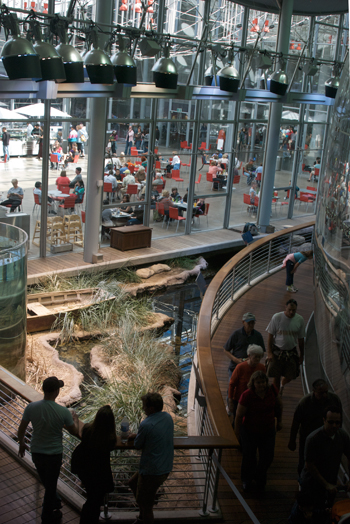 """Looking past the """"swamp"""" to the enclosed food court"""