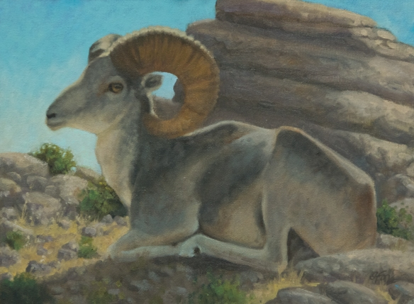 "Catching the Morning Light (Argali sheep, Mongolia)  9x12""  oil on canvasboard- $350"