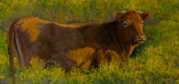 "How Now Red Cow?  6x12"" oil on canvasboard"