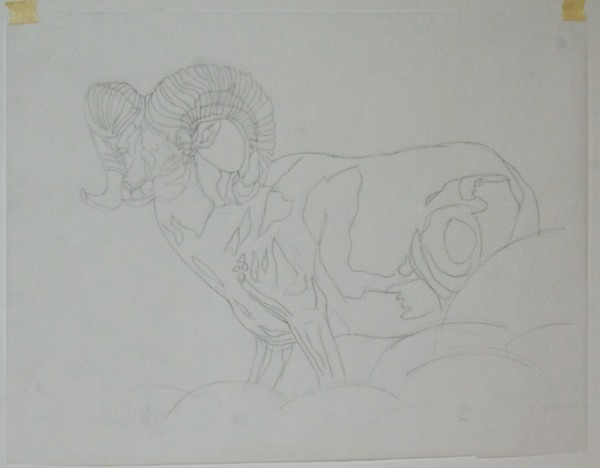 Outline on tracing paper