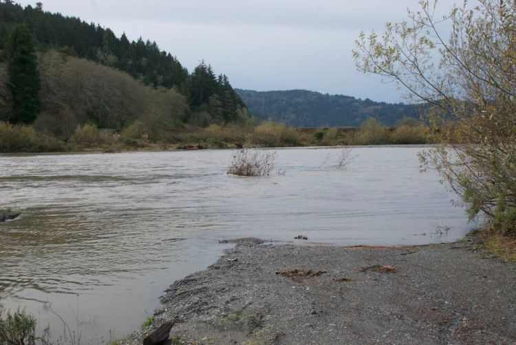 Redwood Creek was running full. Usually we can continue down the gravel onto the beach.