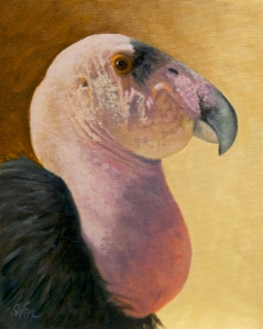 "California Condor  10x8"" oil I think this is a great piece and was hoping the small size would turn the trick for a first time acceptance. Uh, nope."