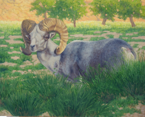Ikh Nart Argali: Heading for Water  oil 16x20""