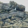 Ikh-Nart-Rocks-#1