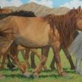 Mongol-Horse-#7-Heading-for-Breakfast