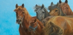 Mongol Horse #8- Watching You  oil  12x24""