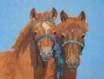 Ready to Grow (Mongol Horse foals)  oil  14x18""