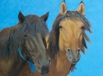 Mongol Horse #9- Friends  oil  14x18""