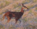 """Morning Warmth 9x12"""" oil  $350"""