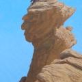 Raven-on-Big-Head-Rock,-Ikh-Nart400w