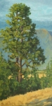 """Pine Tree, National Bison Reserve 16x8"""" oil  $650"""
