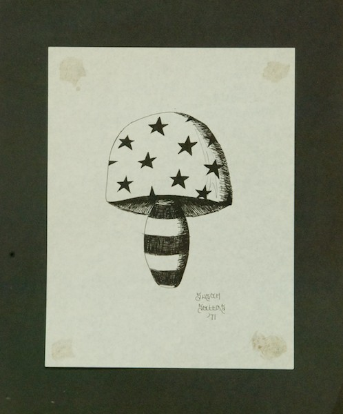 Pena and ink patriotic mushroom