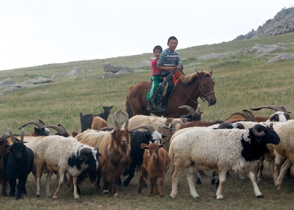 Herder boys, Khan Khentii Mountains, August 2011