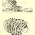 Rocks, argali horn