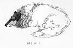 Niki-laying-down