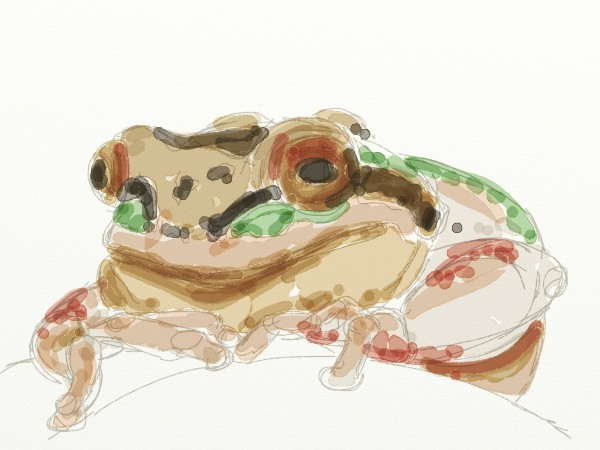 Then I lay in washes using the watercolor brush tool
