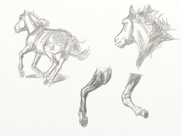 Mongol horse running