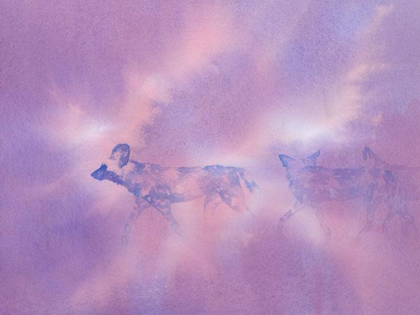 "Trotting (African wild dogs), acrylic 12x16"" by Alison Nicholls"