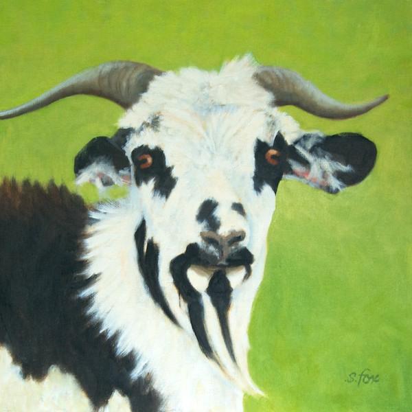 """""""Mongol Goat""""  12x12""""  oil"""