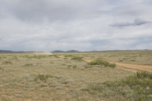 Heading south into the steppe-Gobi transition zone