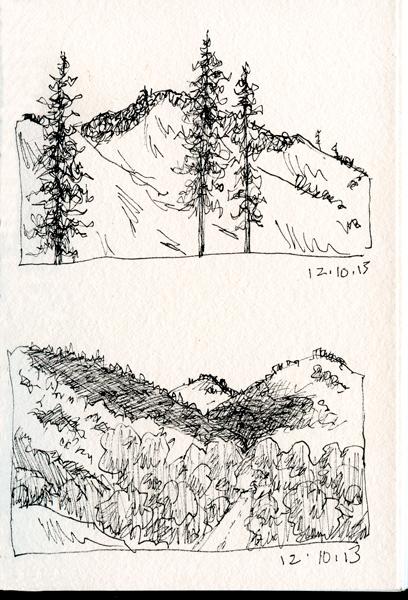 trees,-mountain-shadow