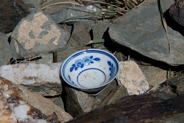 I was struck by the presence of this delicate cup among the rough rocks out in the middle of the desert.