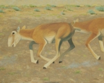 "On the Run (triptych 3) oil 16x20"""