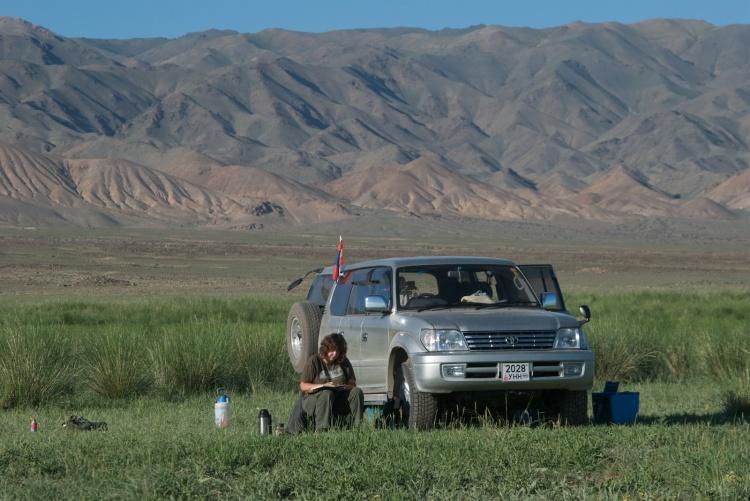 Field sketching at Orog Nuur, a Gobi lake, in 2010.