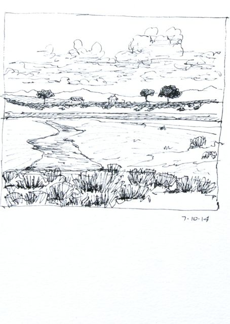 Quick sketch of wetland area (the driver was coming any minute to pick me up)