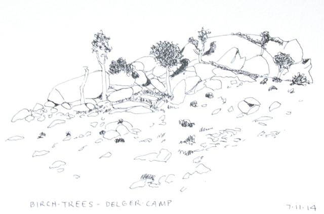 Rocks and trees
