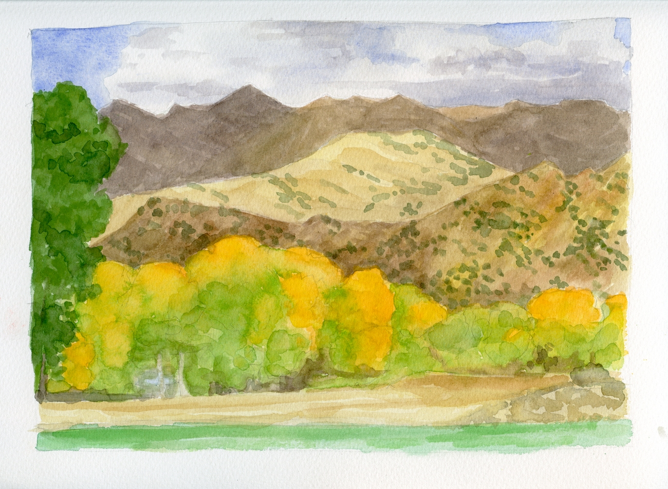 Cottonwoods, Finley Ranch; watercolor