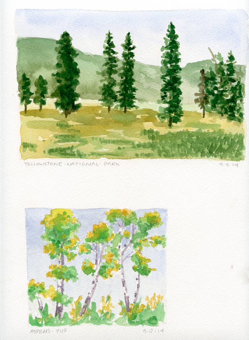 Yellowstone trees; watercolor