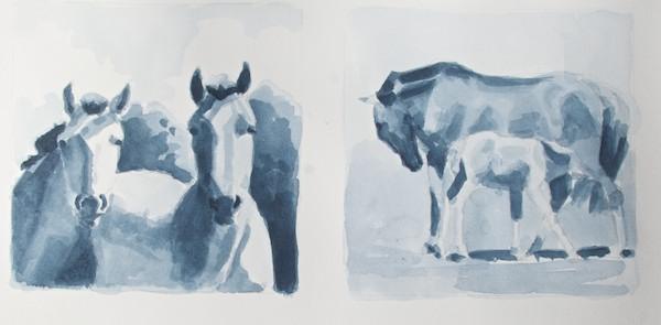 "6x6"" Horse studies"